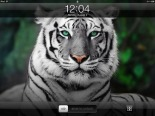 Big-Cat-iPad-Lock-Screen_thumb.jpg